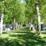 Parco del Lago